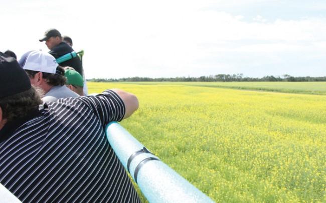 farmers on a canola crop tour
