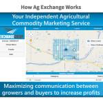 New online grain trading platform