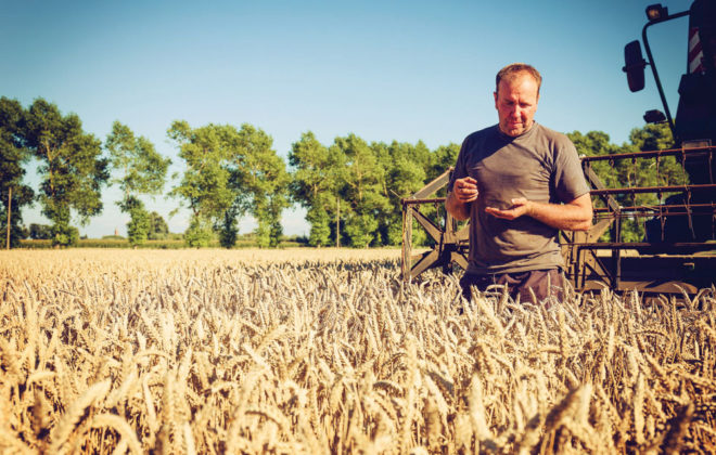 Farming through the drought cycles