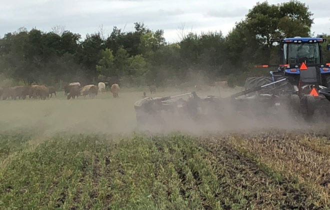 By the end of July, Shaun Cory said it was likely he'd have to bring cattle home early from one pasture.