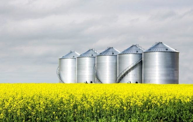 horizontal image of five round steel grain bins sitting in a yellow canola field under a very cloudy sky in the summer