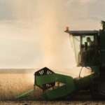 Controlling volunteer canola in soybeans