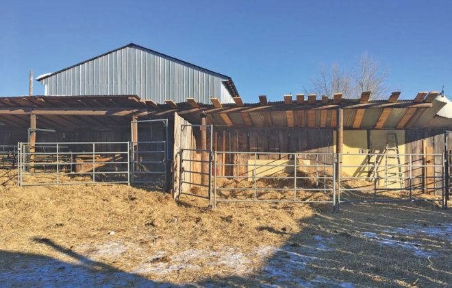 Used utility poles and damaged grain bins provided 