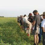 Farmers take a look at smaller-scale plots on a tour of the research farm at Carman, Man., in the summer of 2019.