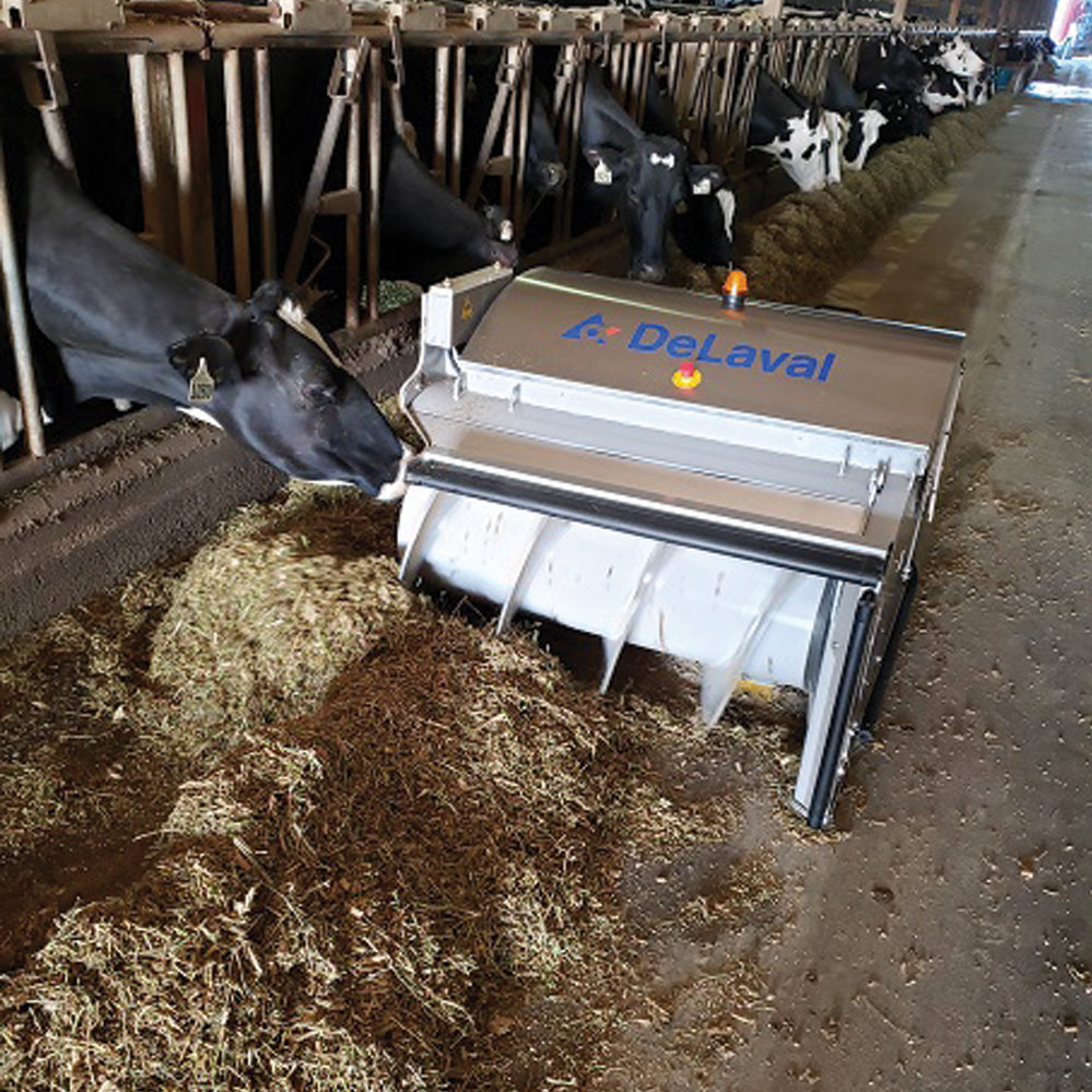 A robot is one way to keep feed in front of cows.