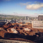 Work cattle with safety top of mind