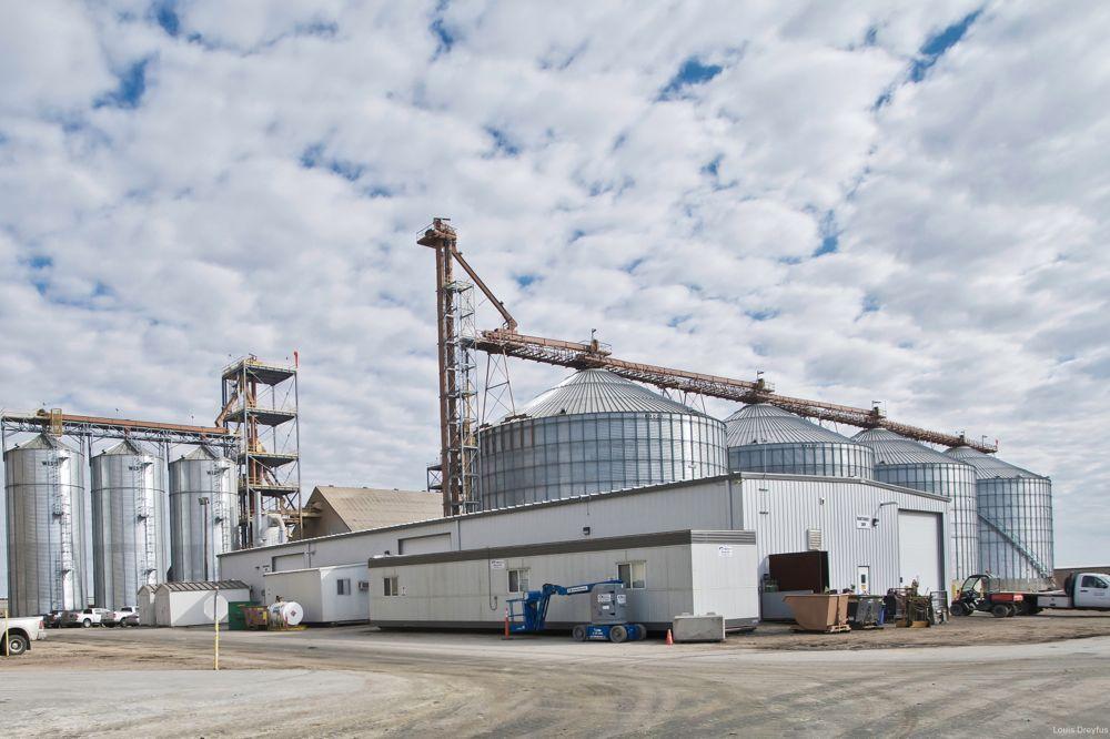 Louis Dreyfus' oilseed processing plant at Yorkton, Sask. (LDC.com)