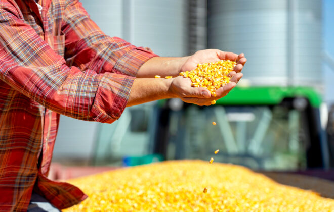 Thirty new options are available to corn growers in 2021.