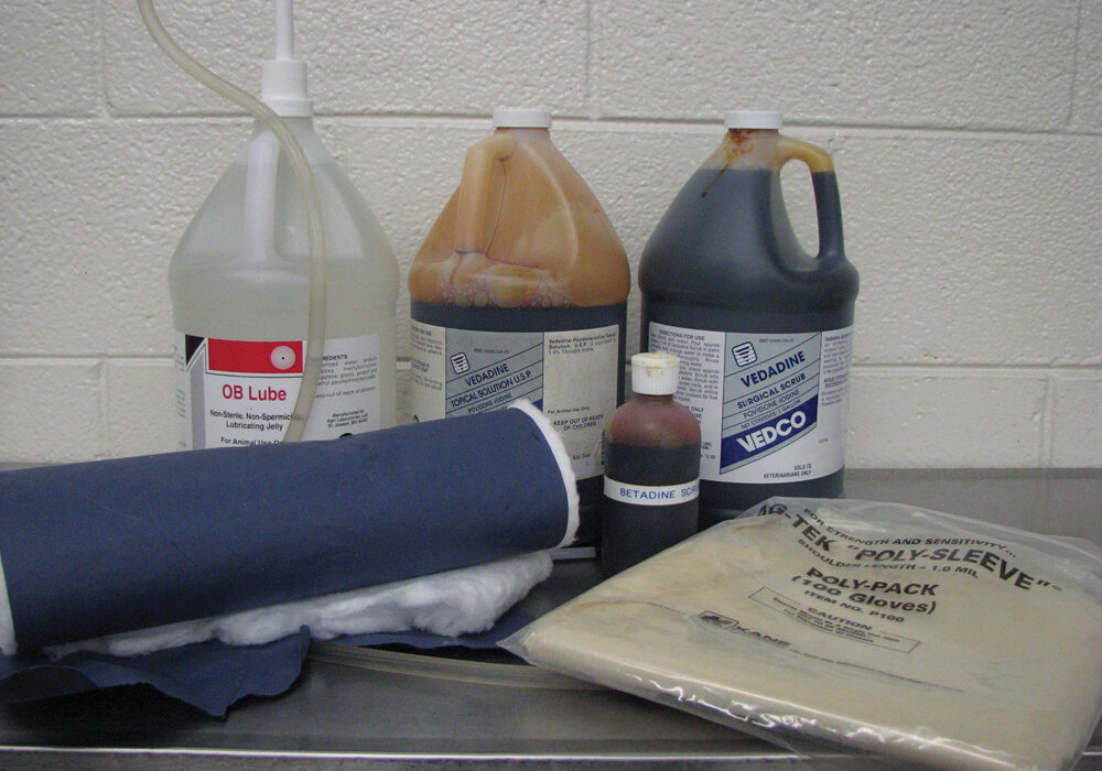 Veterinarian recommends having a good supply of good quality disinfectants and cleaning products on hand at calving.
