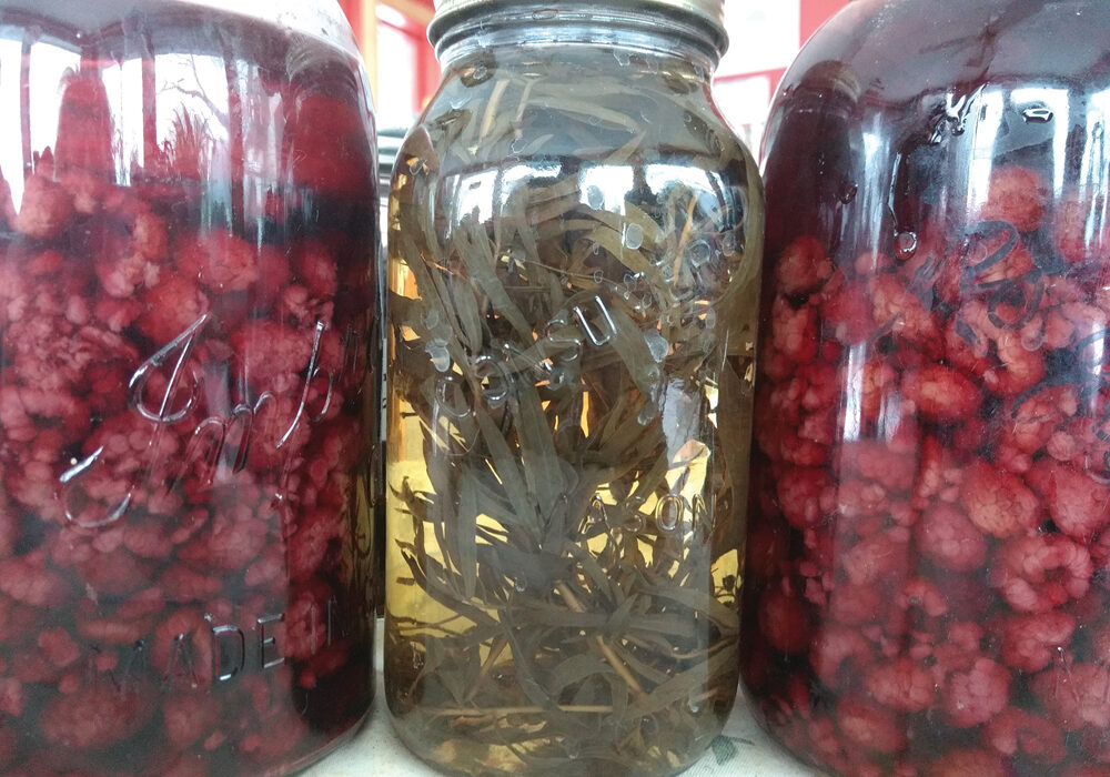Some of my bottles hold self-infused vinegars — my own fruits, berries and herbs stuffed into jars of cider or wine vinegars.