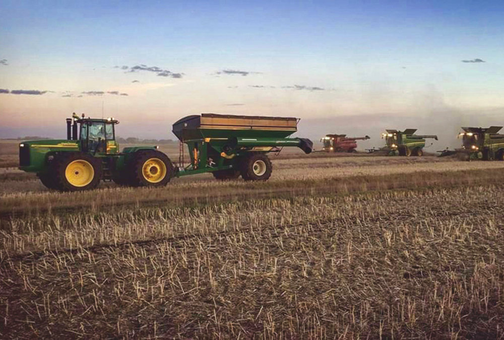 Chain Lakes Farms is located east of the town of Ponoka, Alta. This photo was taken during harvest.