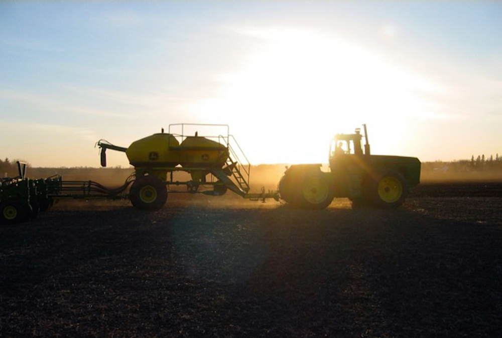 Crop advisor dos and don'ts for #Plant21