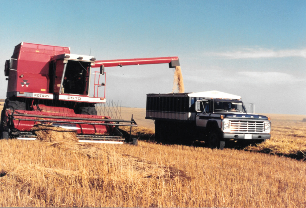 My first experience at Annaheim, Sask., was with the rotary MF 8570. It was a good combine but the cab was not that tight. After a few days, I was plugged up with dust. The door actually rattled and had to be slammed shut every so often. It had a spinning screen to keep off the chaff. However, it did not work all that well.