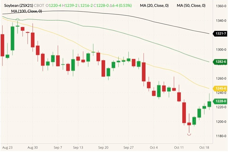 CBOT November 2021 soybeans (candlesticks) with 20-, 50- and 100-day moving averages (yellow, green and black lines). (Barchart)