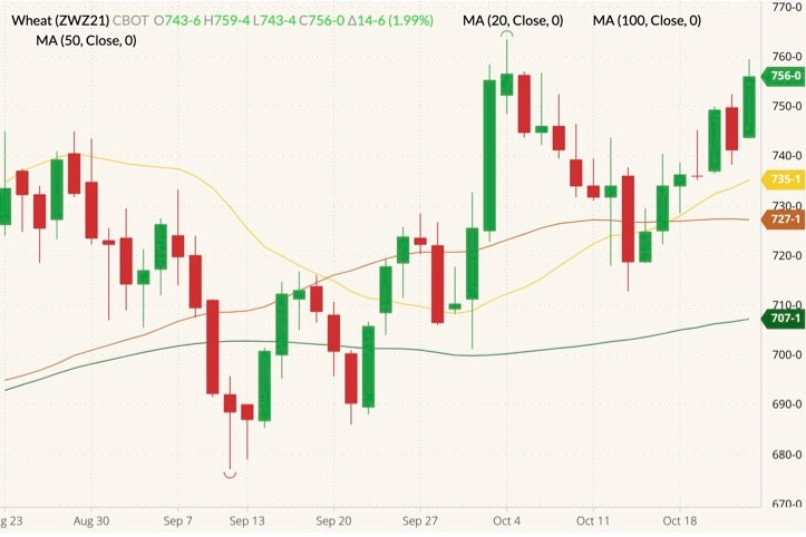 CBOT December 2021 wheat (candlesticks) with 20-, 50- and 100-day moving averages (yellow, brown and dark green lines). (Barchart)